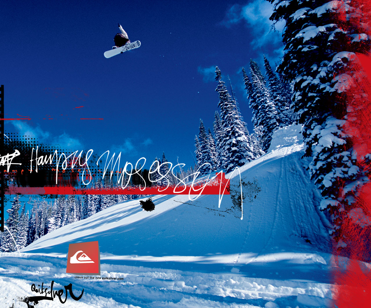 the gallery for gt quiksilver sticker